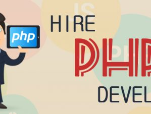 Need a Senior PHP Web Developer